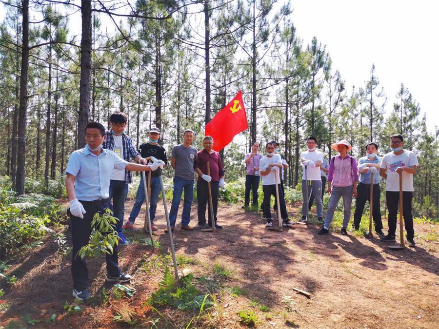 茂源林业技术团队在储备林建设项目基地上开展党建活动.jpg